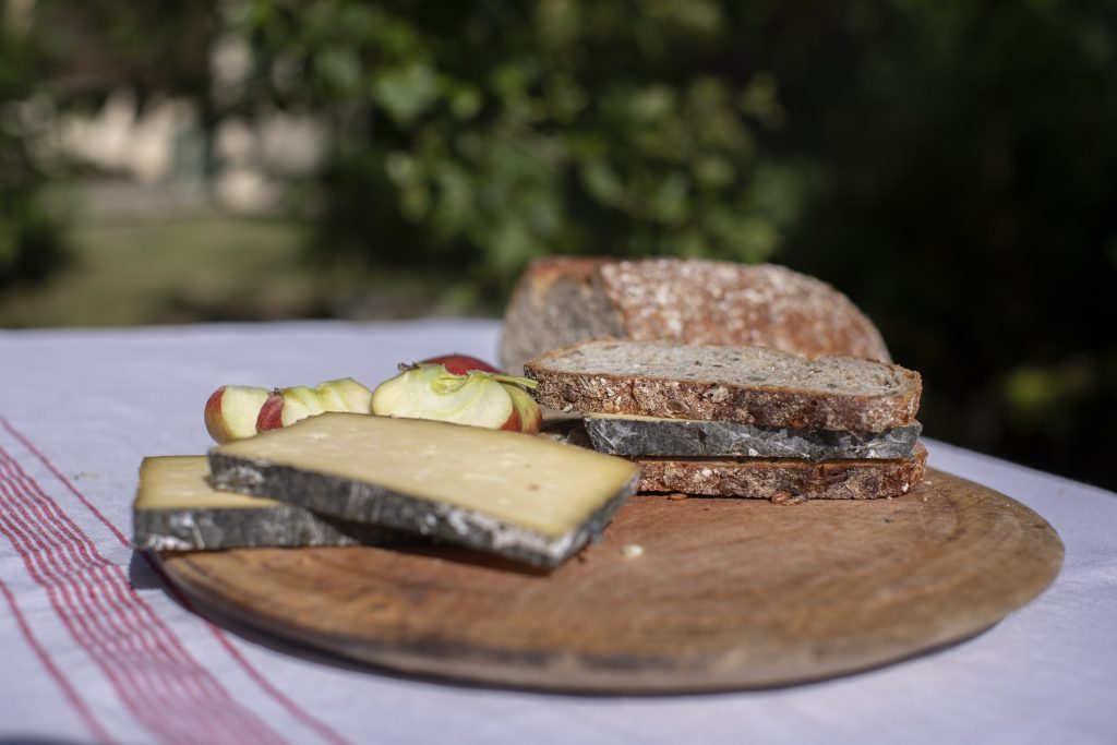 slices of Cornish Yarg, bread and apple on a picnic table